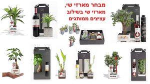 מארזי שי, עציצים ממותגים, מתנות לחגים, מתנות לעובדים