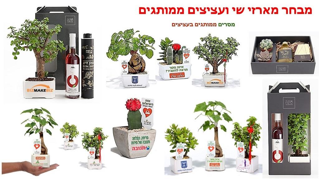 עציצים ממותגים, מארזי שי, מתנות לחגים , מתנות לעובדים וללקוחות