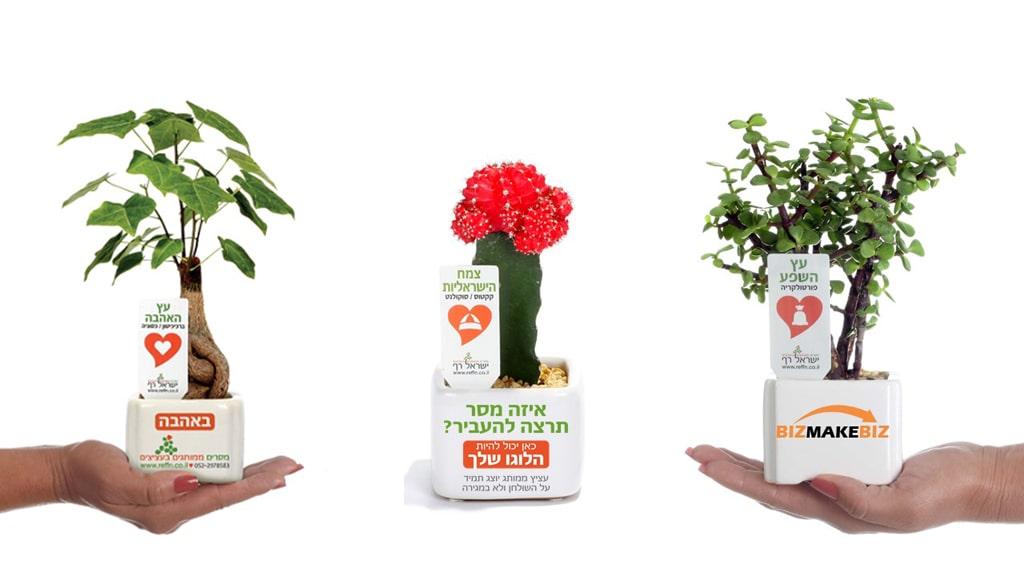 מוצרי פרסום, מתנות לכנסים, עציצים ממותגים, עציצי בטון ממותגים
