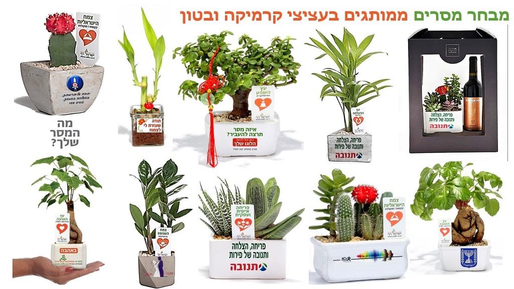 מתנה לראש השנה, מתנה לעובדים, מתנה ללקוחות, עציצים ממותגים