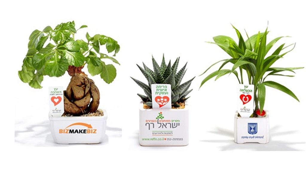 מוצרי פרסום, מתנות לכנסים מתנות לאירועים, עציצים ממותגים