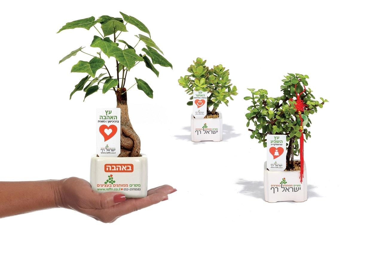 מוצרי פרסום, עציצים ממותגים, מתנות לכנסים, מתנות לאירועים,
