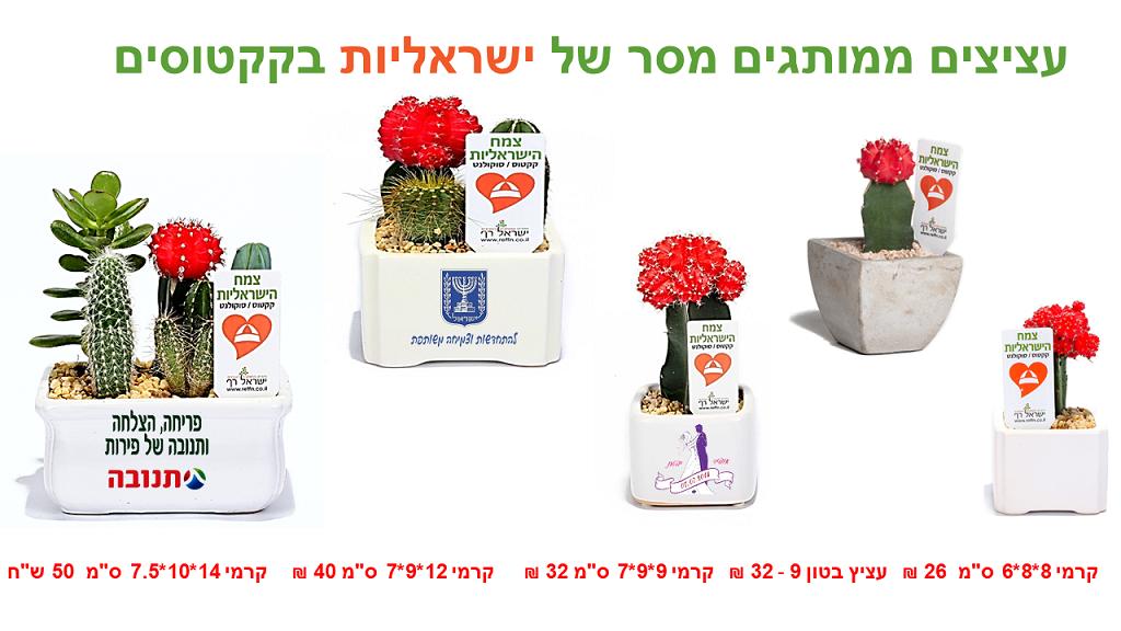 צמח הישראליות