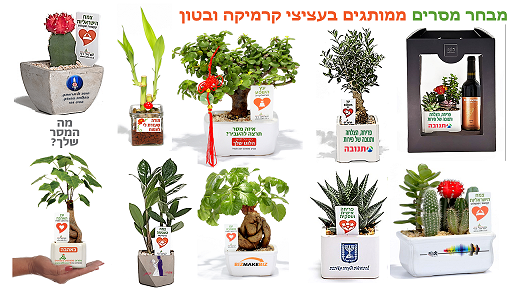 מתנות לראש השנה, מארזי שי, עציצים ממותגים, לחיזוק הקשר עם העובדים והלקוחות.